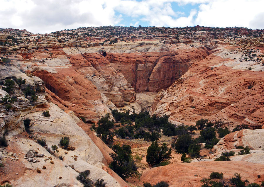 Canyon through the Navajo sandstone, along the Frying Pan Trail