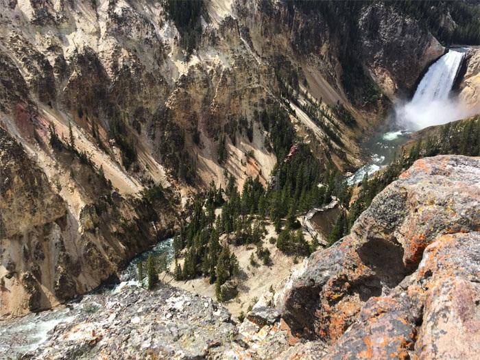 Lower Falls of Grand Canyon of Yellowstone
