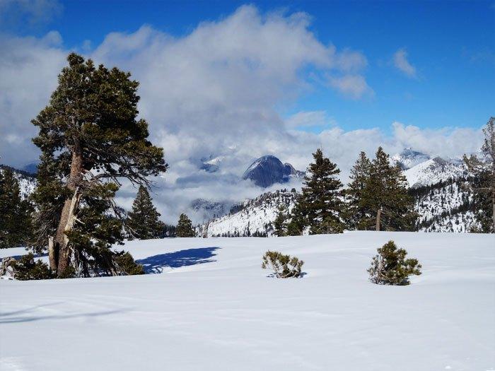 Views of Half Dome from the Horizon Ridge Trail.  Yosemite National Park.