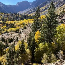 Top Fall Day Hikes Along Highway 395